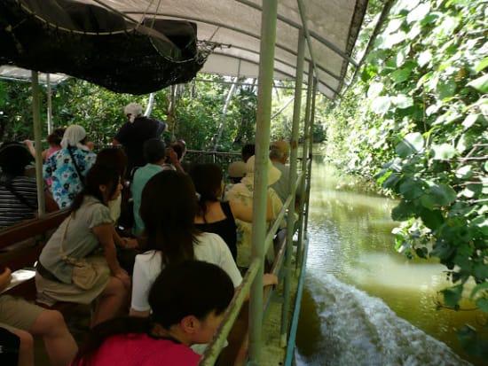 Adventure River Cruise - Turtle Tours Guam (8)