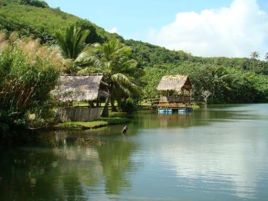 Adventure River Cruise - Turtle Tours Guam (9)