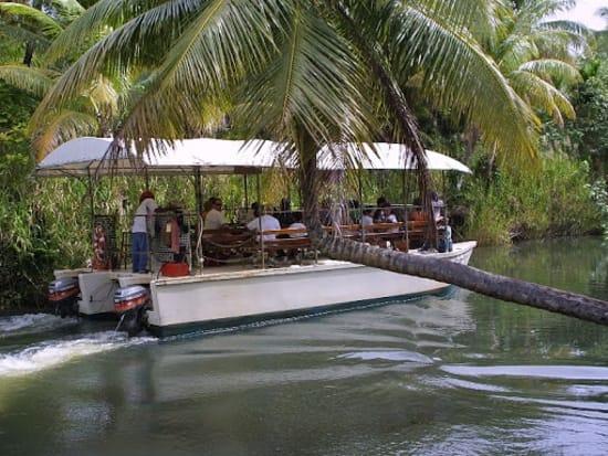 Adventure River Cruise - Turtle Tours Guam (12)