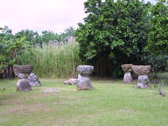 Adventure River Cruise - Turtle Tours Guam (4)