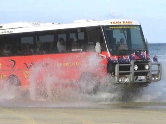 Austin-Bus-Splash