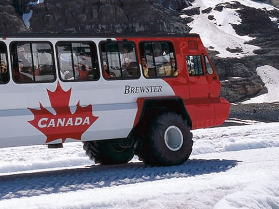 BN-Brewster-Glacier-Adventure-Ice-Explorer