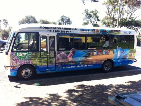 Mornington Bus