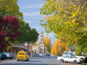 Bunyip%20Tours%20-%20beechworth