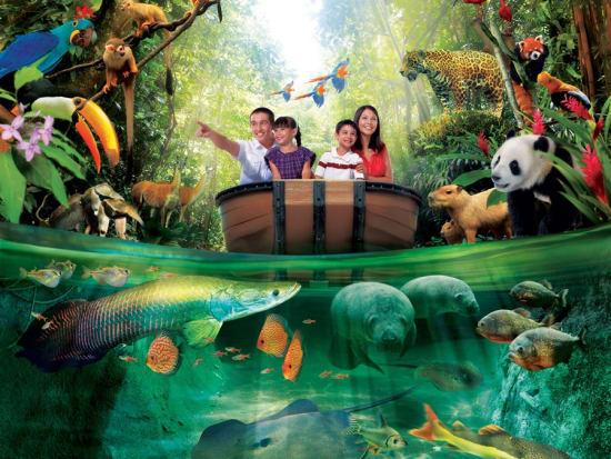 River Safari Amazon River Quest