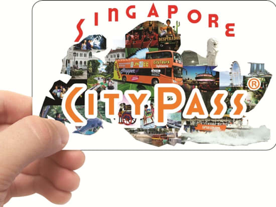 Singapore City Pass with Hand - コピー