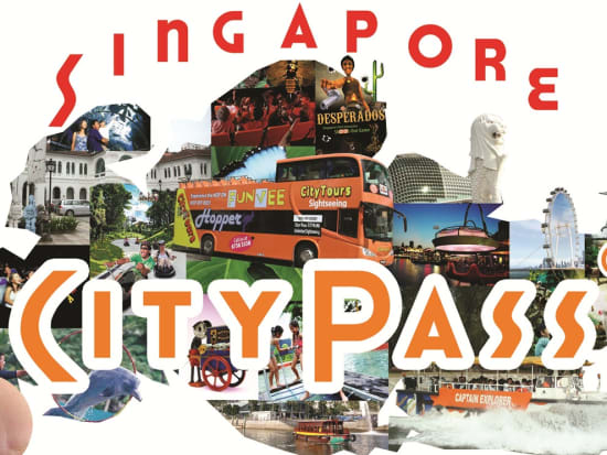 Singapore City Pass with Hand