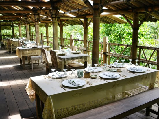 FA- Dining in Bamboo Forest Restaurant