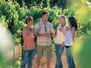margaret-river-winery-tours-wa