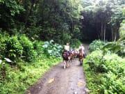 waipio_photo_horseride_michi
