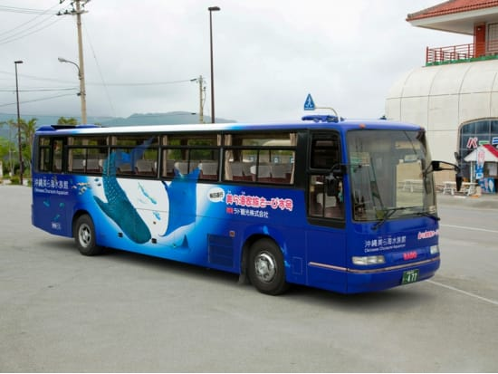 okinawa bus tour