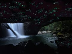 springbook national park cave full of glow worms