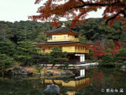 Kinkakuji in the autumn