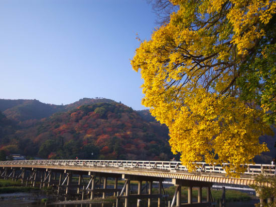渡月橋 (2)