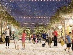 """Walk through the """"Florida"""" snow"""