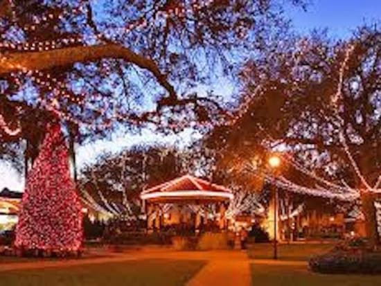 Lights and trees on the town square