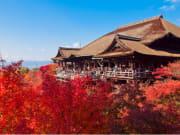 Kiyomizu Temple in the autumn