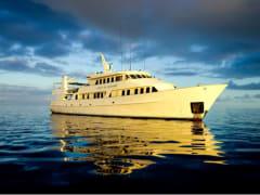 Spirit of Freedom liveaboard dive boat