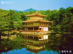 Kinkakuji Temple reflecting from the water