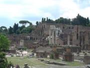 IT_ROME_AM FORO ROMANO WALKING_Foro Romano3_2011
