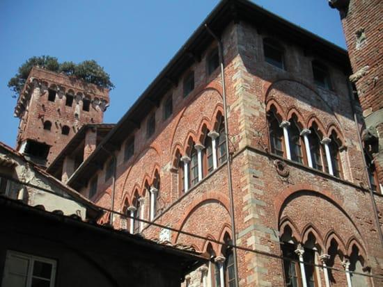 Torre e Palazzo Guinigi (Museo MUST)