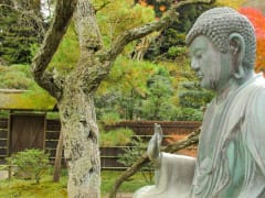 Tokeji Temple garden and Buddha statue