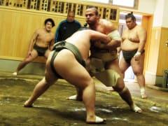 Sumo wrestlers at morning practice in Tokyo