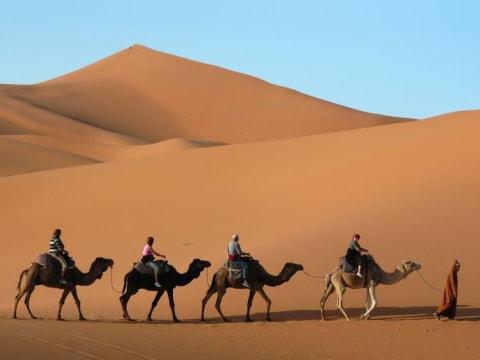 サハラ砂漠とワルザザート