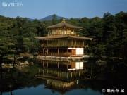 Golden Kinkakuji Temple in summer
