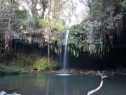 Hawaii_Maui_Temptation Tours_Kaeleku Cave