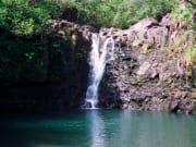 Hawaii_Maui_Temptation Tours_Road to Hana