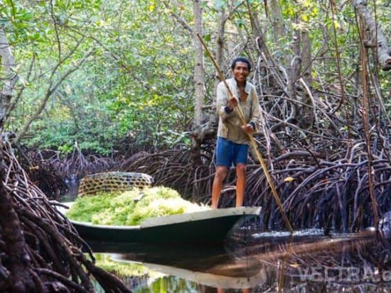 lembongan_mangrove-40