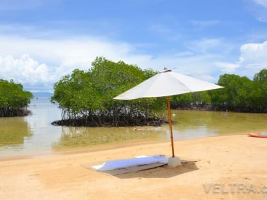 lembongan_mangrove-07