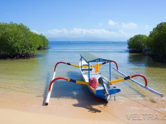 lembongan_mangrove-08