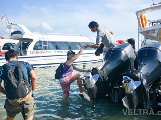 lembongan_mangrove-02