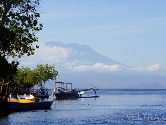lembongan_mangrove-03