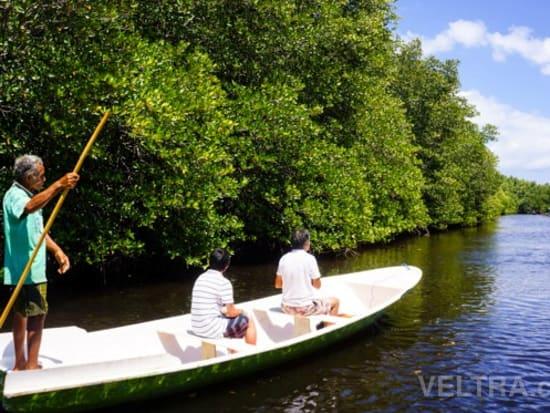 lembongan_mangrove-23