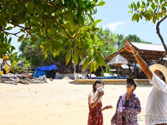 lembongan_mangrove-15