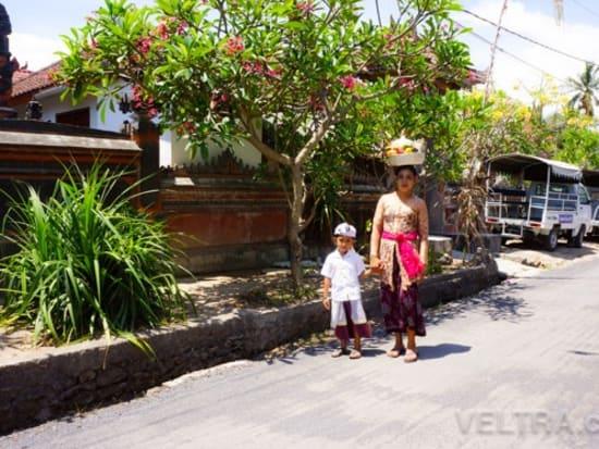 lembongan_mangrove-05