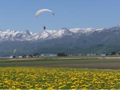 Flying over Furano with a paraglider