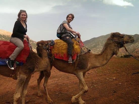 Atlas Camel Trek-001