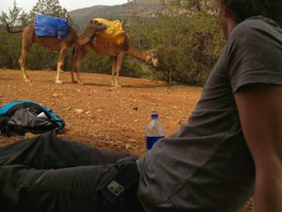 Atlas Camel Trek1-001