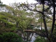 和歌山城境内紅葉峡庭園1