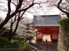 紀三井寺 石段から見る山門4