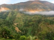 Blue+Mountain+hillside+view