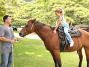 kualoa_horse01