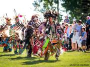 History & Heritage in Southern Alberta 1-crop