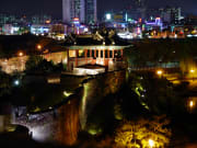 Suwon Hwaseong Night Tour