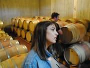 athens wine3