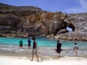 東洋のガラパゴス南島03